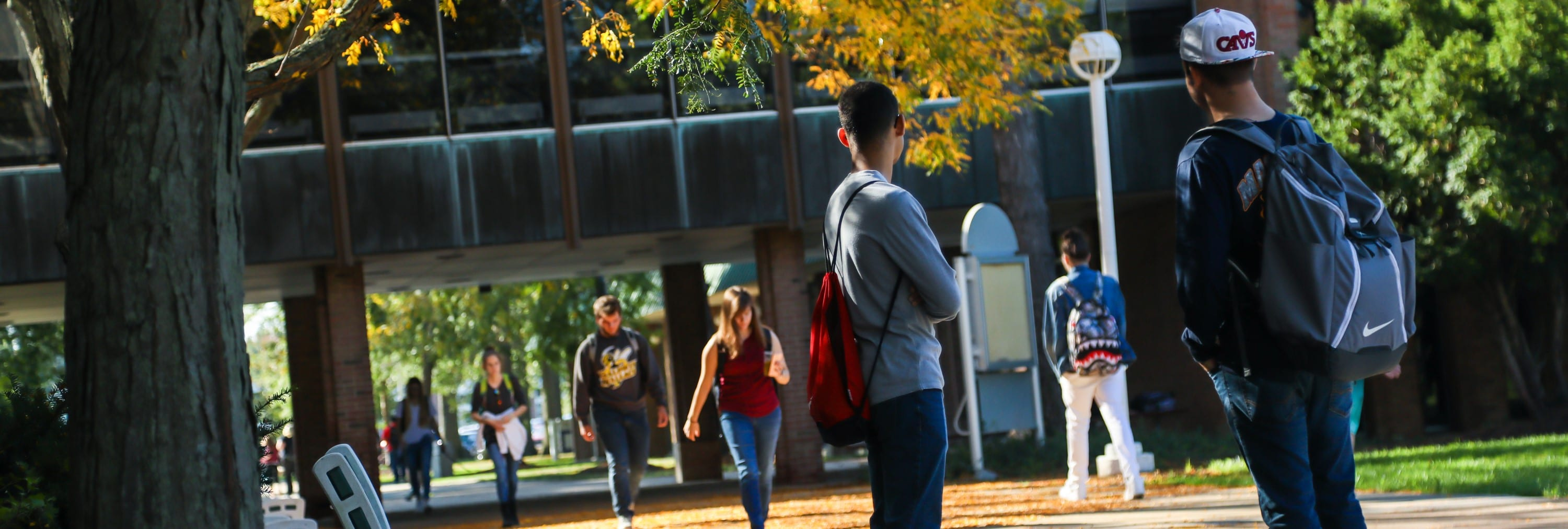 Students walking on campus on a fall day.