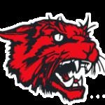 New London Logo Image