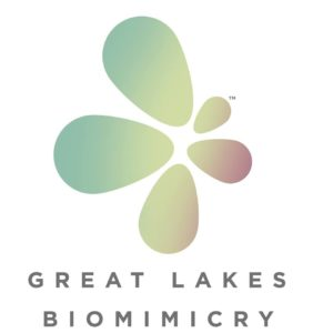 The Logo for Great Lakes Biomimicry
