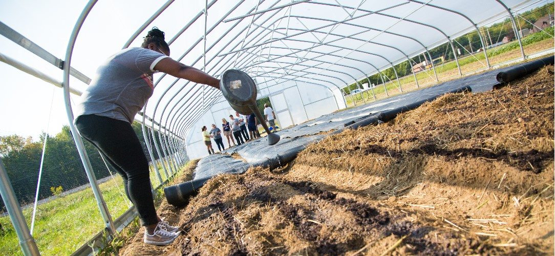 LCCC Culinary Student Working on Local Farm