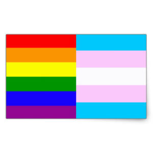 An image of the Pride Flags