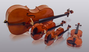 Black River String Quartet